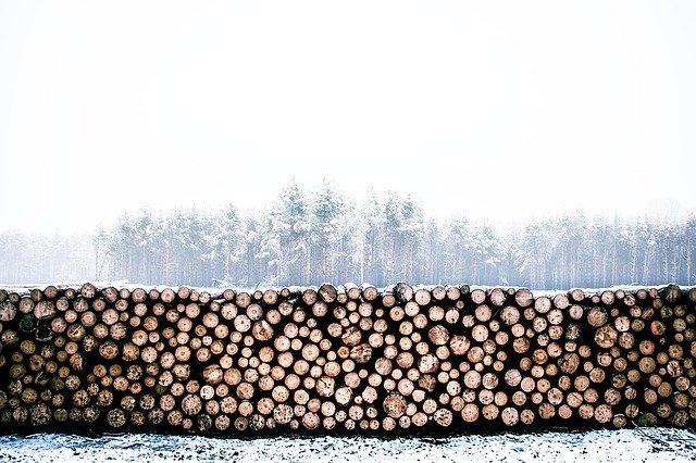 Ved vinter