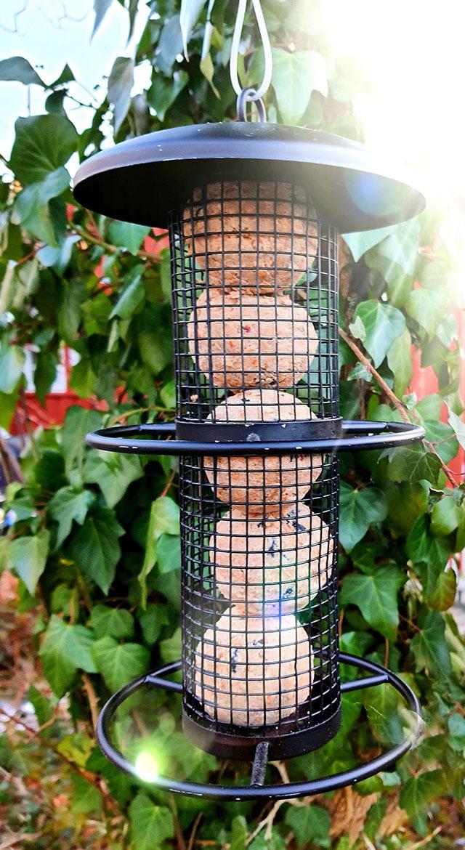 Fuglemater med forballer kopi