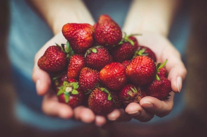 jordbær hovedbilde